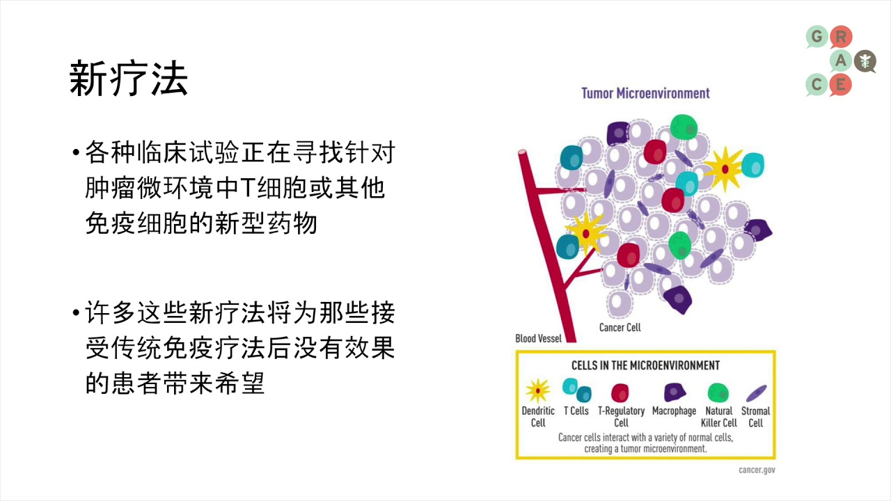 Embedded thumbnail for Lung Cancer Video Library Mandarin - Combinations of Immunotherapy Agents in Advanced NSCLC